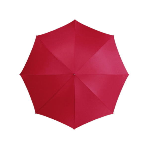 Зонт-трость «Lisa»
