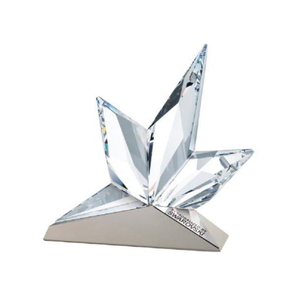 Восходящая звезда на металле